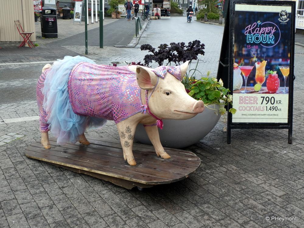 A Pig in Silk