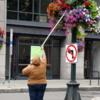 Watering the Flowers, Seattle