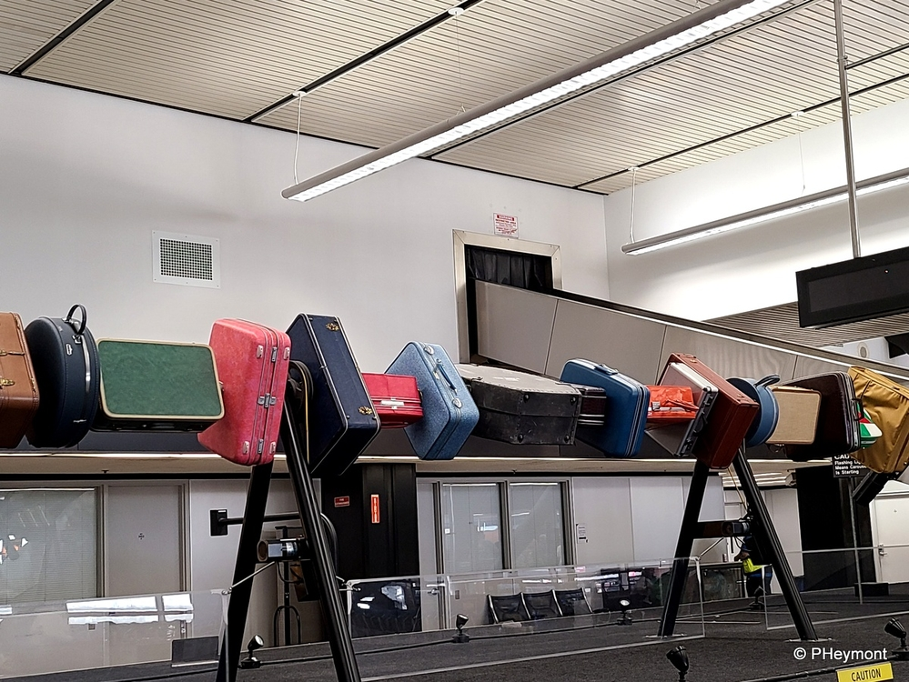 At the Baggage Carousel, Seattle