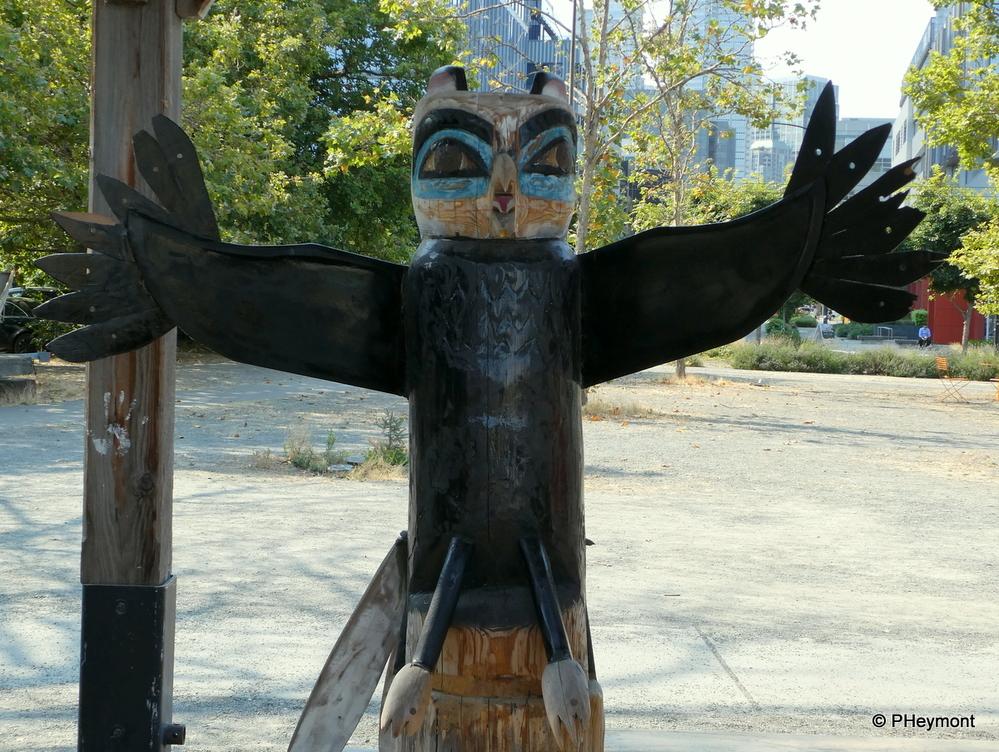 Owl on Patrol, Seattle
