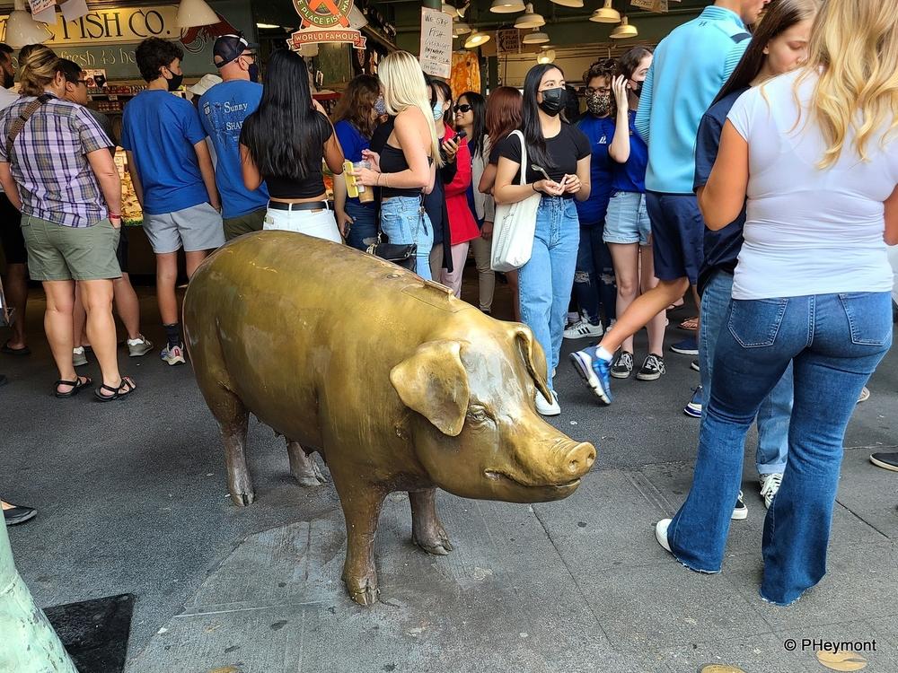 Big Bronze Piggy Bank